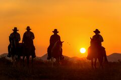Free Cowboy Riding A Horse Royalty Free Stock Images - 220444799