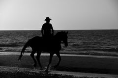 Cowboy is riding on the beach Stock Photography
