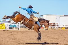 BOWEN RIVER, QUEENSLAND, AUSTRALIA - JUNE 10TH 2018: Cowboy competing in the Saddle Bronc event at Bowen River country rodeo. A cowboy riding a bucking bronco royalty free stock images