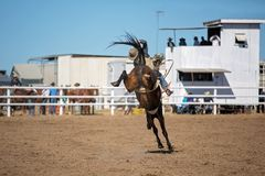 Bareback Bucking Bronc Riding At Country Rodeo. Cowboy riding a bucking horse in bareback bronc event at a country rodeo Royalty Free Stock Photos