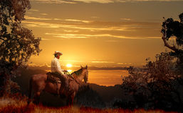A cowboy riding on his horse VII. A cowboy riding on his horse into a yellow sunset stock photo