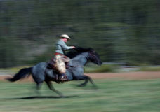 Cowboy Riding Horse #2. Cowboy riding blue roan horse - panning and motion blur royalty free stock photo