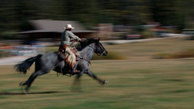 Cowboy Riding Horse #3. Cowboy riding blue roan horse - panning and motion blur - buildings in background royalty free stock image