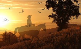 Cowboy riding on a horse II. A cowboy riding a horse in a golden meadow with birds flying above royalty free stock photo