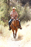 A cowboy riding in a meadow with trees up a mountain. Royalty Free Stock Image