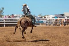 Cowboy Riding A som sparkar bakut tjuren på en landsrodeo Royaltyfria Foton