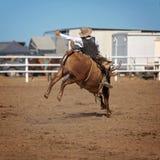 Cowboy Riding A som sparkar bakut tjuren på en landsrodeo Arkivfoto