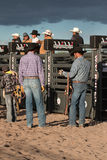Cowboy Rodeo Bull Riding Immagine Stock