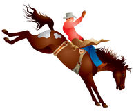 Cowboy rodeo horse. Cowboy on the bronco horse rodeo vector illustration from the Wild West series Stock Photos