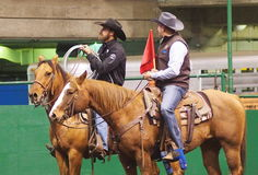Cowboy Roping And Official On del vitello a cavallo Immagini Stock