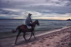 Cowboy in the sea Royalty Free Stock Images