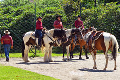 Cowboy show Royalty Free Stock Image