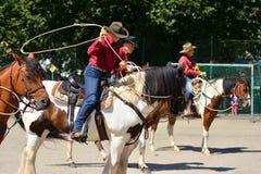 Cowboy show Stock Photos