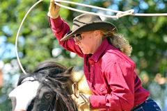 Cowboy show Stock Photography