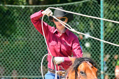 Cowboy show Stock Images