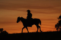 Cowboy Silhouette. Cowboy on horseback silhouetted against orange sunset Royalty Free Stock Photos