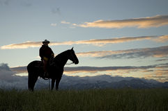 Cowboy silhouette royalty free stock photo
