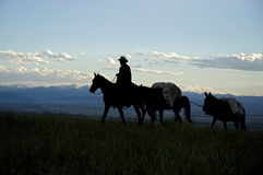 Cowboy silhouette. Cowboy on horseback with supply train. Montana horse ranch Stock Photography