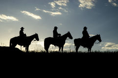 Cowboy silhouettes. Three cowboys,on horseback,silhouetted against a dawn sky Royalty Free Stock Photo