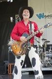 Cowboy singer Stock Photos