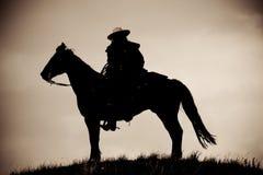Cowboy solitário Imagem de Stock