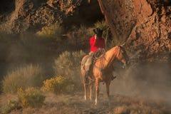 Cowboy solitário II Fotografia de Stock Royalty Free
