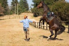 Cowboy som tämjer hästen Royaltyfria Foton