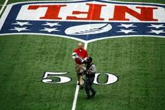 Cowboy-Stadion-Super Bowl-Trophäe Lizenzfreies Stockfoto