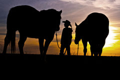 Cowboy Standing with Horses Royalty Free Stock Images