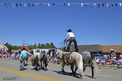 Cowboy standing on horses at a parade Stock Photography