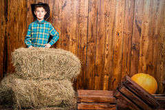 Cowboy style Royalty Free Stock Photo
