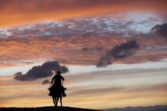 Cowboy su un cavallo Immagini Stock Libere da Diritti