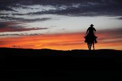 Cowboy su un cavallo fotografia stock libera da diritti