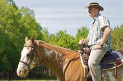 Cowboy sul suo cavallo Fotografia Stock Libera da Diritti