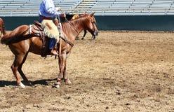 Cowboy sur le cheval Photographie stock