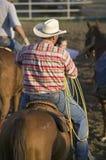 Cowboy sur le cheval avec la corde Photos libres de droits