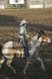 Cowboy sur le cheval avec la corde Photographie stock libre de droits