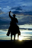 Cowboy sur roping de garniture de cheval Photo libre de droits