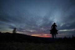 Cowboy sur un cheval image libre de droits