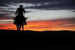 Cowboy sur un cheval photo stock