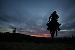 Cowboy sur un cheval image stock