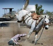 Cowboy thrown from horse Stock Photos