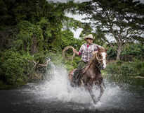 Cowboy, Trinidad, Cuba Fotografia Stock Libera da Diritti