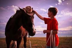 Cowboy u. sein Pferd Stockfotos