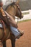 Cowboy vers le haut photographie stock