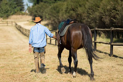 Cowboy walking horse Royalty Free Stock Photo