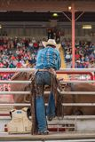 Cowboy watches saddle bronc event from behind the chutes. Williams Lake, British Columbia/Canada - July 1, 2016: man watches the saddle bronc competition from Royalty Free Stock Images
