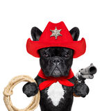 Cowboy western sheriff dog. Western cowboy sheriff   french bulldog dog with rope , red scarf and pistol outside in the desert, wearing red american hat Royalty Free Stock Photos