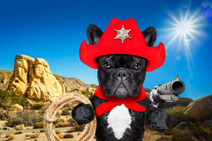 Cowboy western sheriff dog. Western cowboy sheriff french bulldog dog with rope , red scarf and pistol outside in the desert, wearing red american hat stock photo