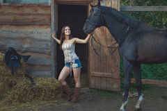 Cowboy woman is holding a horse. Cowboy woman is holding a horse by the bridle on the farm Stock Photo